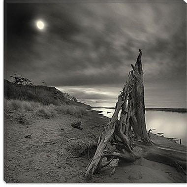 iCanvas ''Tower of Song'' by Geoffrey Ansel Agrons Photographic Print on Wrapped Canvas