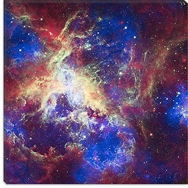 Astronomy and Space Tarantula Nebula (Spitzer Space Observatory) Graphic Art on Wrapped Canvas