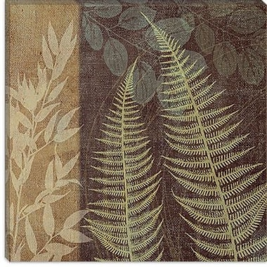 iCanvas 'Ferns I' by Erin Clark Painting Print on Canvas; 12'' H x 12'' W x 1.5'' D