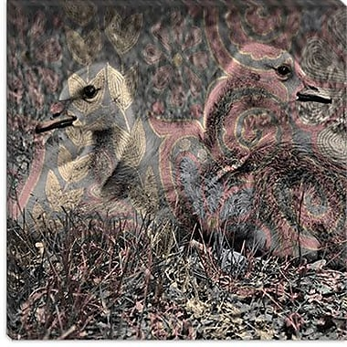 iCanvas Canadian Baby Geese #2 Graphic Art on Canvas; 12'' H x 12'' W x 1.5'' D