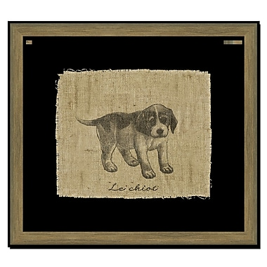 Melissa Van Hise Dog on Linen I Framed Graphic Art; Black