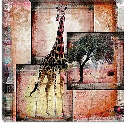 iCanvas 'Girafe' by Luz Graphics Graphic Art on Canvas; 37'' H x 37'' W x 0.75'' D