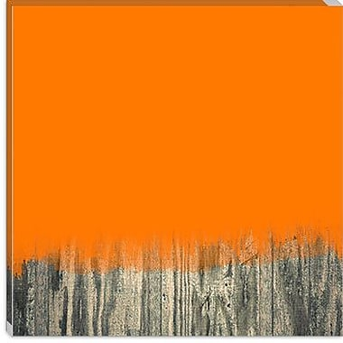 iCanvas Modern Over the Fence Graphic Art on Canvas; 26'' H x 26'' W x 0.75'' D