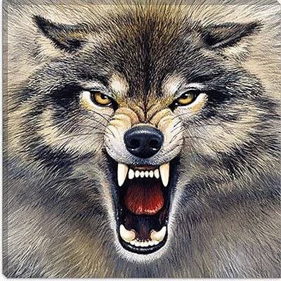 iCanvas ''Wolf'' by Harro Maass Graphic Art on Wrapped Canvas; 18'' H x 18'' W x 1.5'' D