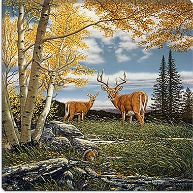 iCanvas ''Woodland Meadows'' by John Van Straalen Painting Print on Wrapped Canvas