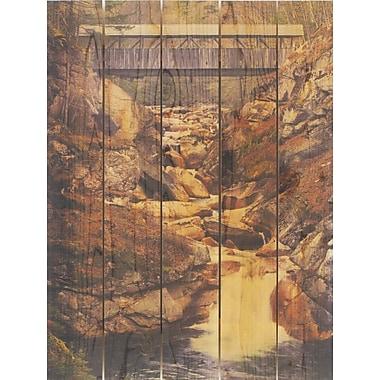 Gizaun Art Covered Bridge Photographic Print; 28 x 36