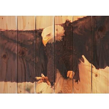 Gizaun Art Bald Eagle Photographic Print; 22.5 x 16