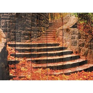 Gizaun Art Fall Steps Photographic Print; 33 x 24