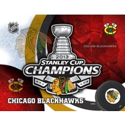 Holland Bar Stool NHL Graphic Art on Wrapped Canvas; Chicago Blackhawks - Stanley Cup 2013