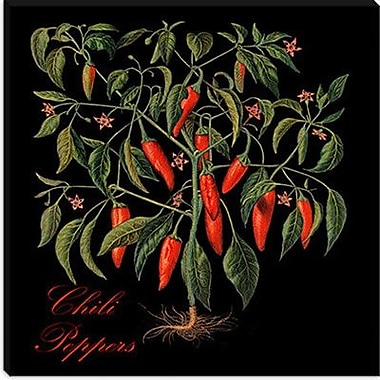 iCanvas ''Chili Peppers'' by Mindy Sommers Graphic Art on Canvas; 18'' H x 18'' W x 1.5'' D