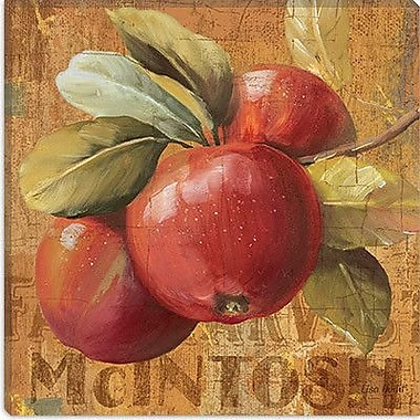 iCanvas 'Apple Season' by Lisa Audit Graphic Art on Canvas; 18'' H x 18'' W x 0.75'' D