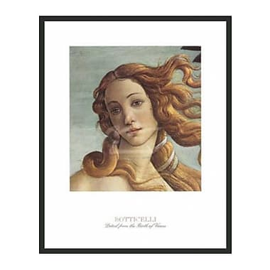 Frames By Mail The Birth of Venus by Sandro Botticelli Framed Painting Print