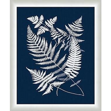 Melissa Van Hise Buckler Ferns Framed Graphic Art; Navy