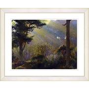 Studio Works Modern ''Forest Sunbeams'' by Mia Singer Framed Graphic Art; White