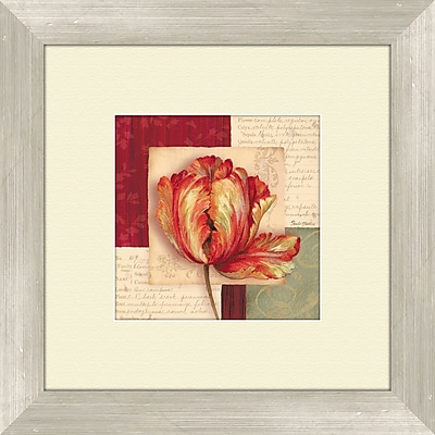 PTM Images Bella Donna A Framed Graphic Art