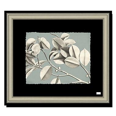 Melissa Van Hise Rheede's II Framed Graphic Art; Spa Blue