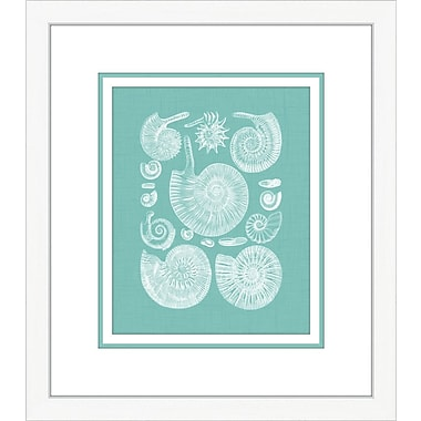 Melissa Van Hise Coquillage II Framed Graphic Art; Azure