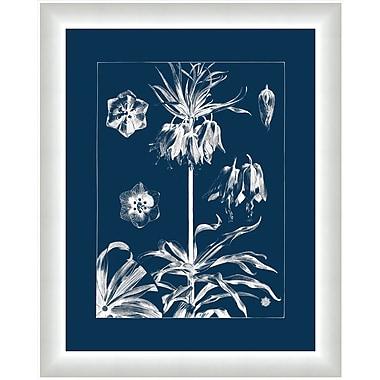 Melissa Van Hise Flora I Framed Graphic Art; Gray/Navy