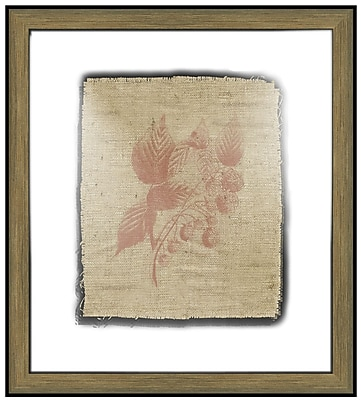Melissa Van Hise Raspberries Framed Graphic Art; Sienna