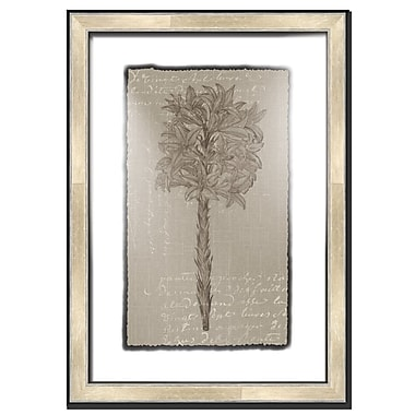 Melissa Van Hise Floral Stems w/ Writing IV Framed Graphic Art; Taupe