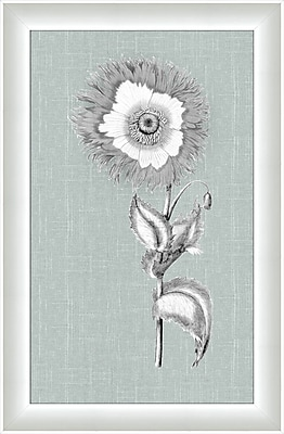 Melissa Van Hise Flora IV Framed Graphic Art