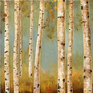 North American Art Eco II by Allison Pearce on Painting Print Wrapped Canvas
