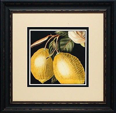 North American Art 'Dramatic Lemon' by Vision Studio Framed Graphic Art