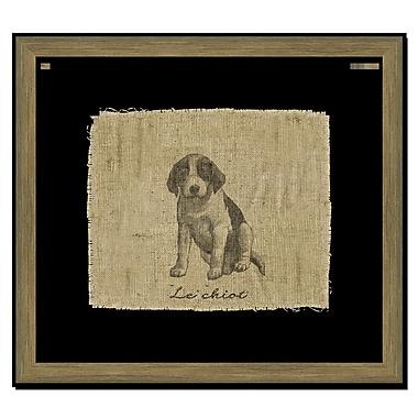 Melissa Van Hise Dog II Framed Graphic Art; Black