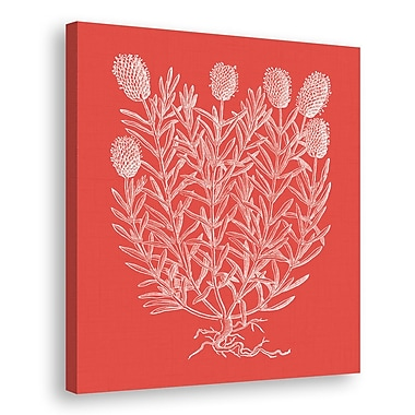 Melissa Van Hise Floral Impression Graphic Art on Wrapped Canvas; Watermelon