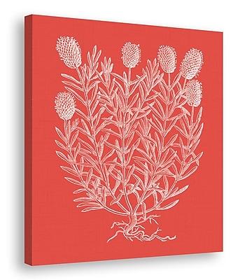 Melissa Van Hise Floral Impression Graphic Art on Wrapped Canvas; Watermelon