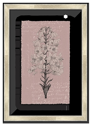 Melissa Van Hise Floral Stems w/ Writing II Framed Graphic Art; Plum