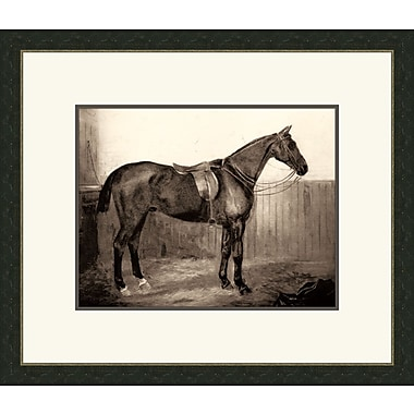 Melissa Van Hise Horse III Framed Graphic Art