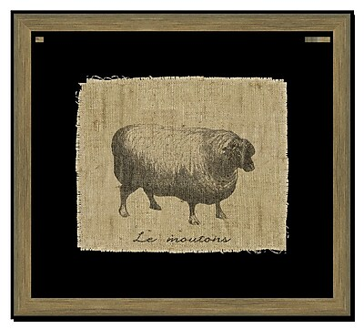 Melissa Van Hise Sheep I Framed Graphic Art; Black