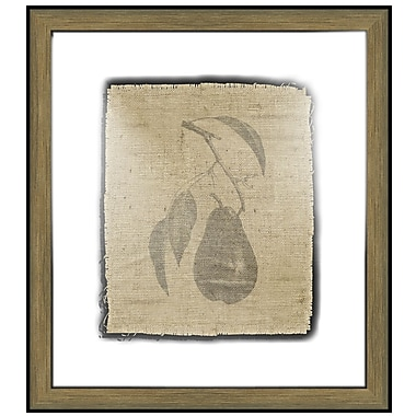 Melissa Van Hise Pretty Fruit I Framed Graphic Art; Black