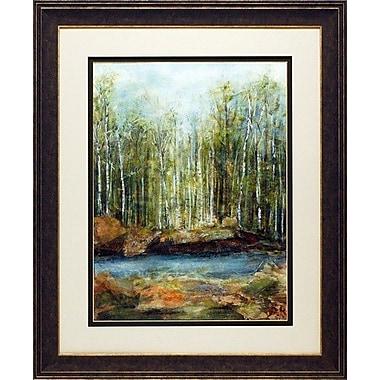 North American Art 'Adventure II' Framed Print
