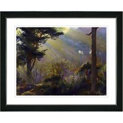Studio Works Modern ''Forest Sunbeams'' by Mia Singer Framed Graphic Art; Black