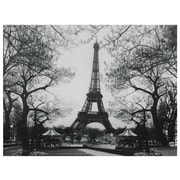 Oriental Furniture Eiffel Tower Park Photographic Print on Wrapped Canvas