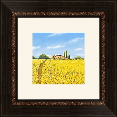 PTM Images Poppies 2 Piece Framed Painting Print Set