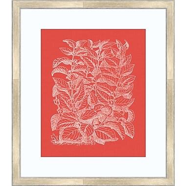 Melissa Van Hise Floral Impression II Framed Graphic Art; Watermelon