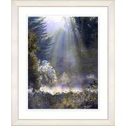 Studio Works Modern ''Morning Light'' by Mia Singer Framed Fine Graphic Art; White