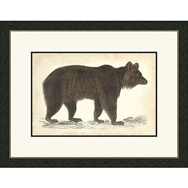 Melissa Van Hise Bear ll Framed Graphic Art