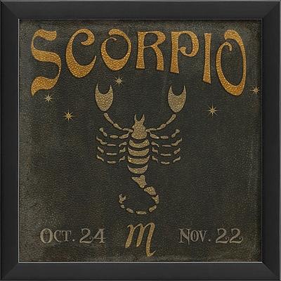 The Artwork Factory Zodiac Scorpio Framed Graphic Art