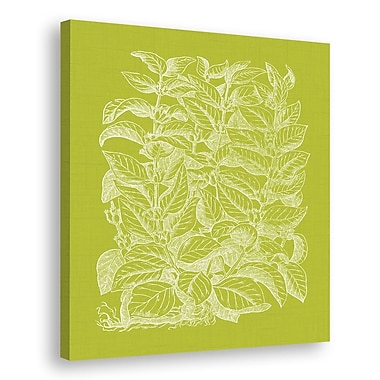 Melissa Van Hise Floral Impression II Graphic Art on Wrapped Canvas; Spring Green