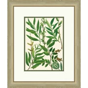 Melissa Van Hise Emerald Foliage I Framed Graphic Art
