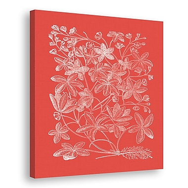 Melissa Van Hise Floral Impression III Graphic Art on Wrapped Canvas; Watermelon