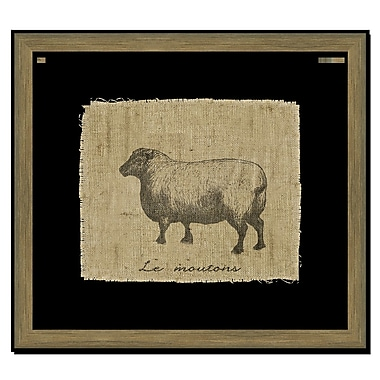 Melissa Van Hise Sheep II Framed Graphic Art; Black