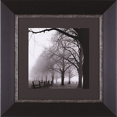 Art Effects Black and White Morning by Harold Silverman Framed Photographic Print
