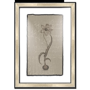 Melissa Van Hise Floral Stems w/ Writing III Framed Graphic Art; Taupe