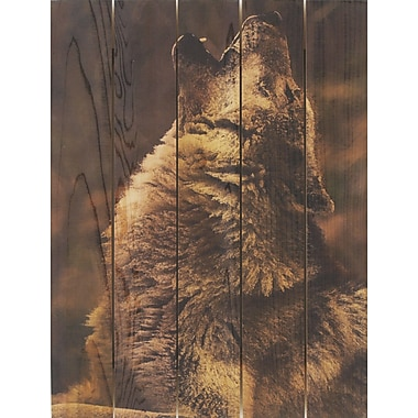 Gizaun Art Crying Wolf Photographic Print; 28 x 36