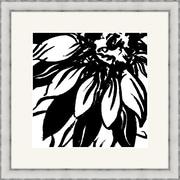 Melissa Van Hise Bloomy Burst I Framed Graphic Art; Black